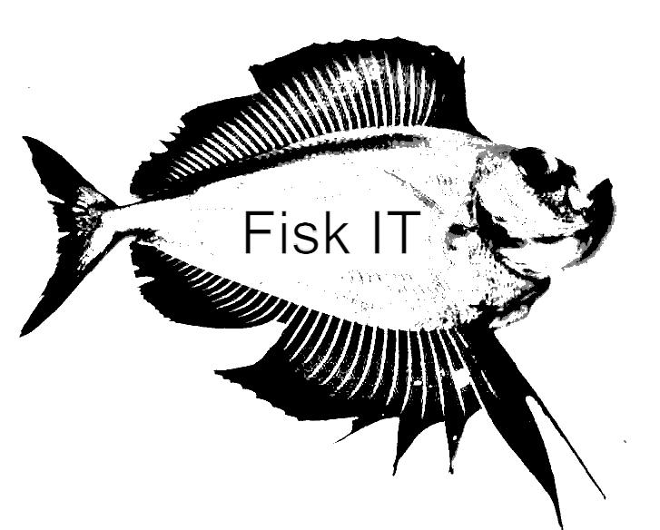 Fisk IT